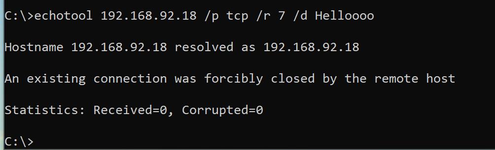 Echotool for TCP echoserver